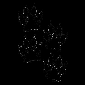 hundepfoten-im-set