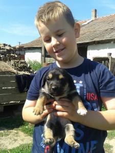 Adrian & Hund 2
