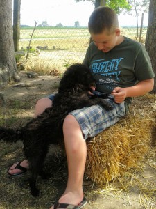 Daniel & Hund 1