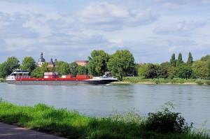 Rhein 6