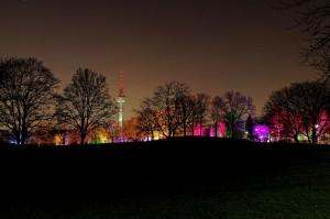 Winterlichter Luisenpark_004221