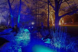 Winterlichter Luisenpark_008841