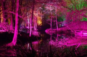 Winterlichter Luisenpark_009747
