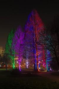 Winterlichter Luisenpark_0122a61