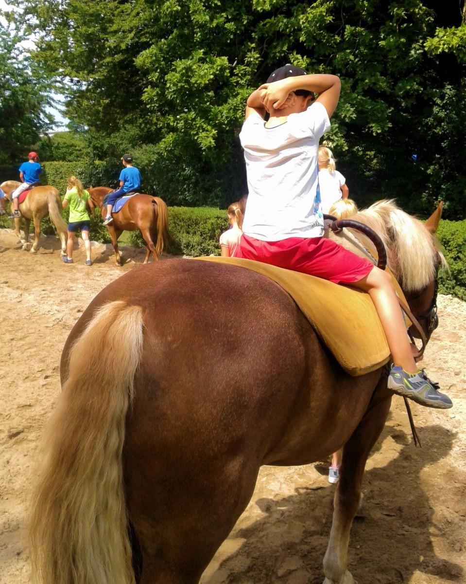Jannik & Pferd 6