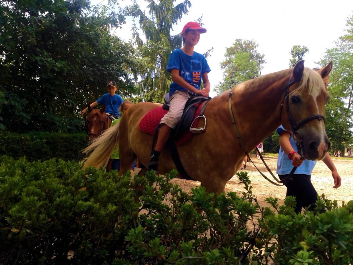 Max & Pferd 8
