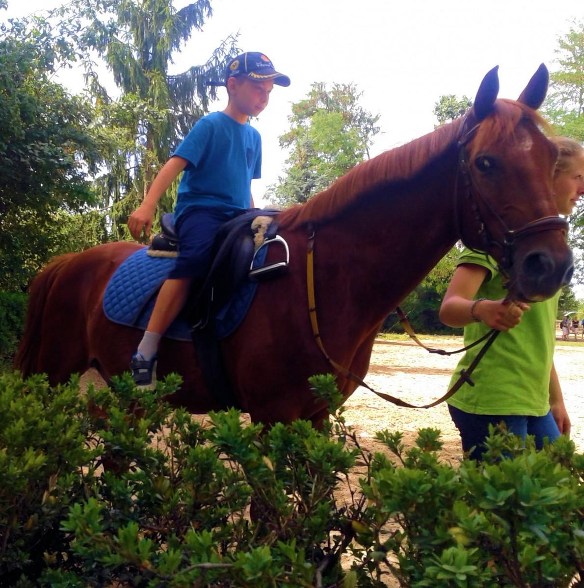Nick & Pferd 9